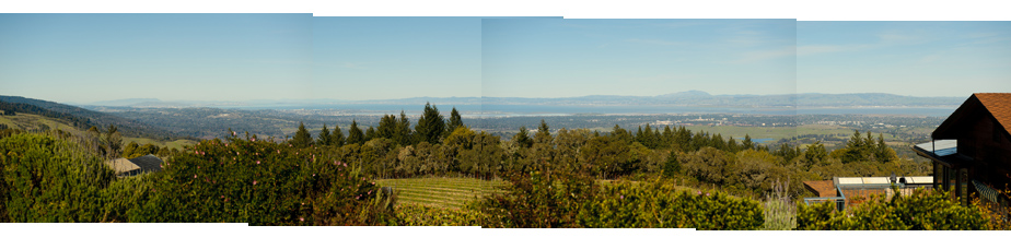 Thomas Fogarty Winery View